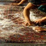 نظافت فرش دست بافت