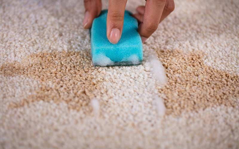 راهنمای شستشوی فرش ماشینی با شامپو فرش